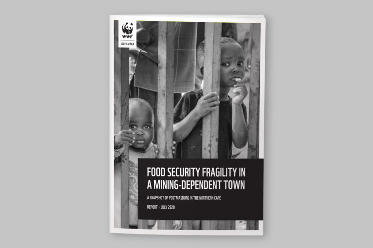 WWF Food security fragility in a mining-dependent town